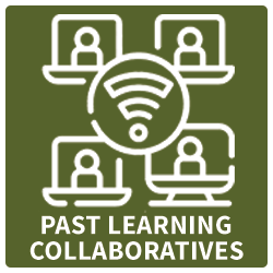 Past Learning Collaboratives Icon